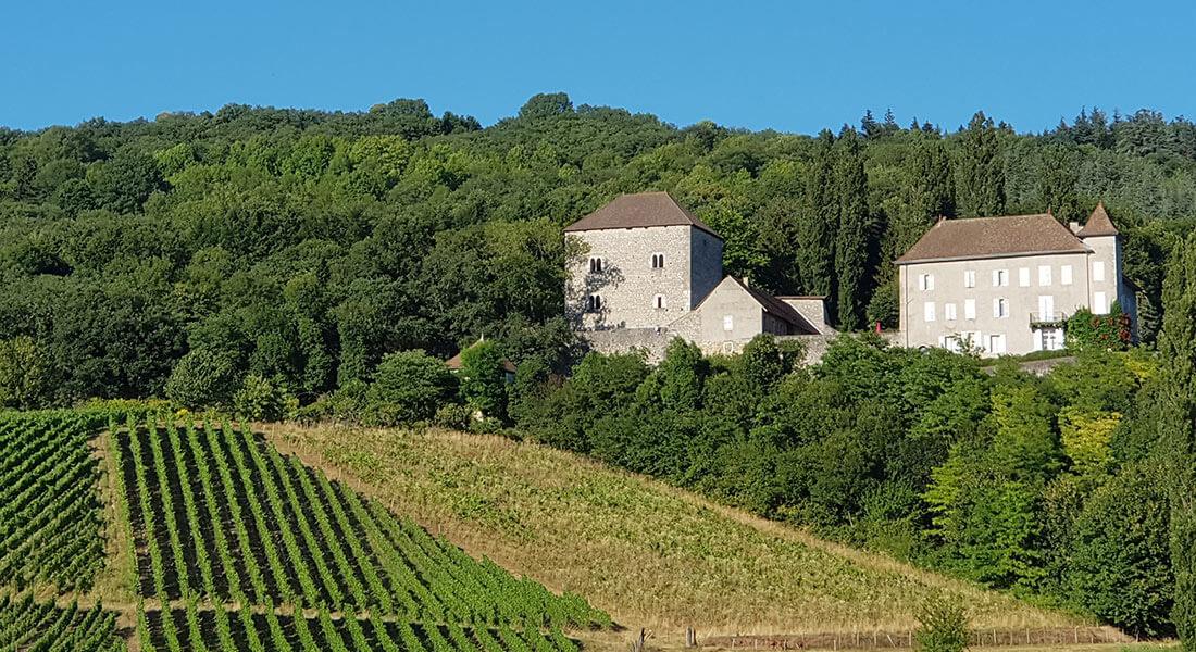 Villa-Riviera-demeure-forte-vignes