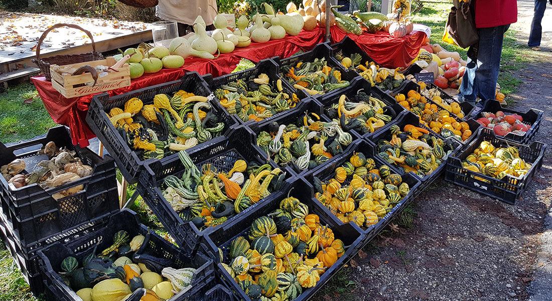 Villa-Riviera-marché-légumes-rustiques
